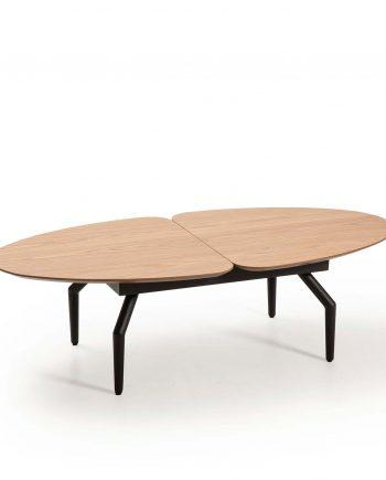 coffee table Casandra Hamilton 13925 IZ